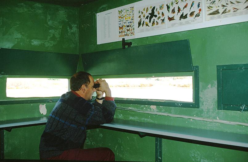 Il-Ghadira: Charles Gauci (Leiter) im Beobachtungshäuschen des ersten Vogelschutzgebietes von Malta