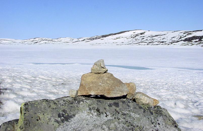 Frühsommer auf der Hardangervidda