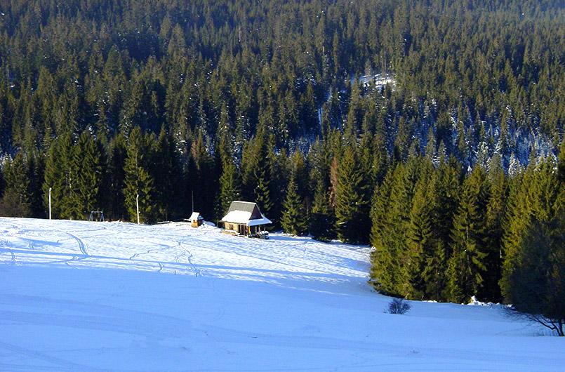 Bukowina Tatrazanska: Etwas außerhalb des Ortes liegt ein zweites Schneefeld mit einfachen Pisten, Schlepplift und herrlichem Blick auf die Hohe Tatra.