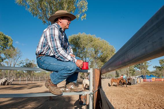 Eureka Creek Rodeo: Zuschauer mit Teetasse