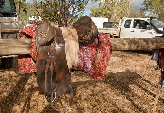Eureka Creek Rodeo: Stillleben