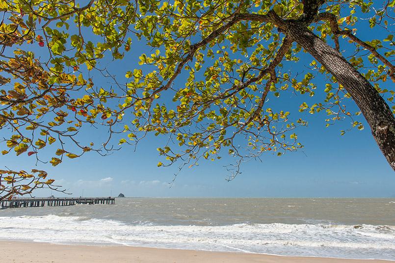 Der Strand von Palm Cove in Queensland