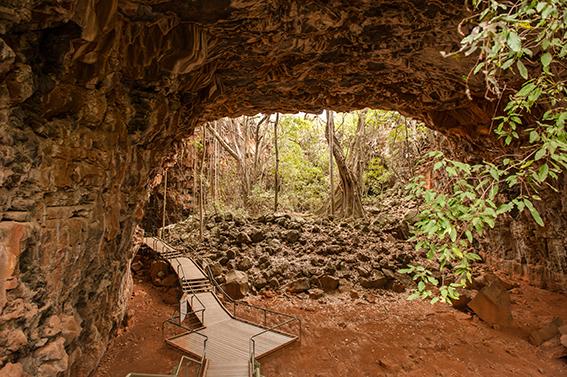 Spannender Nationalpark auch unter der Erde: die Undara Lava Tubes