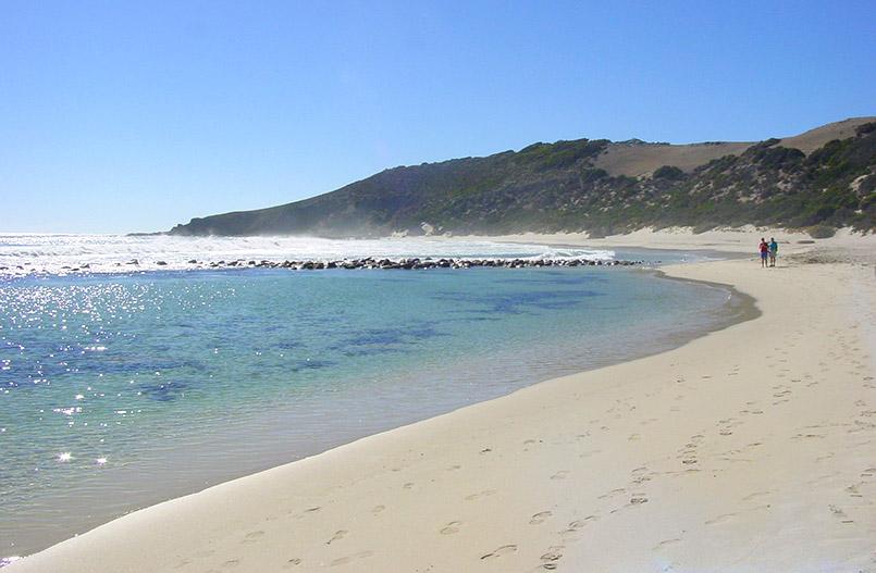 Kangaroo Island/Stokes Bay.