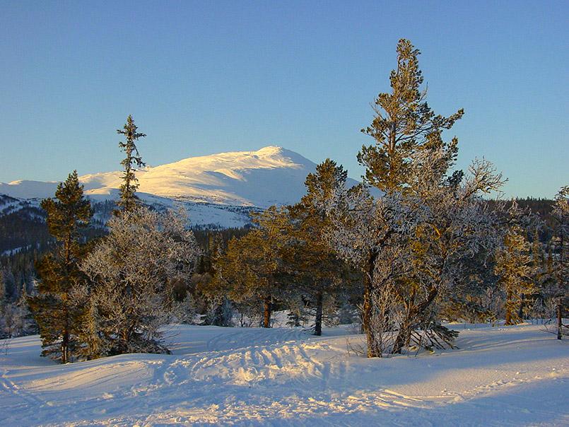 Åre: Das Skigebiet erstreckt sich von Ost nach West um den Åreskutan (1.420 m).