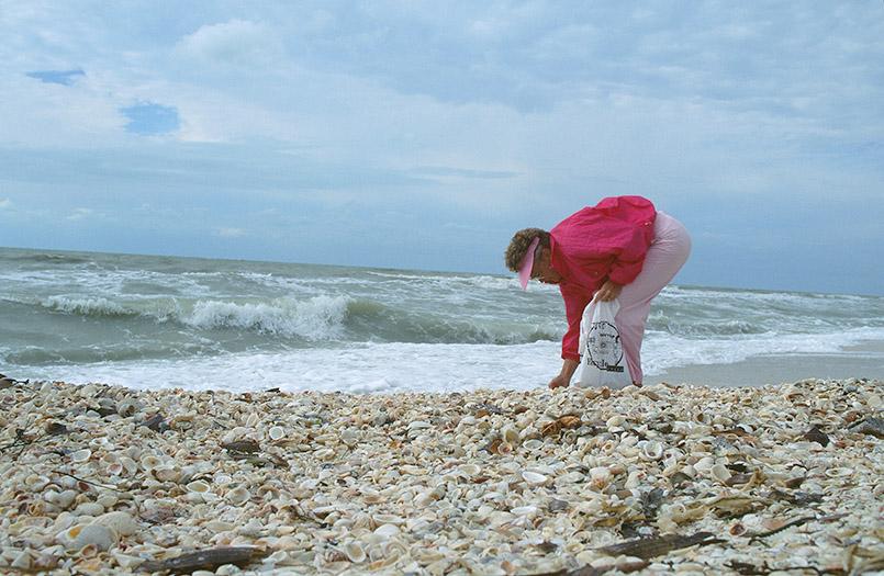 """Muschelsammler am Strand: der legendäre Sanibel """"stoop"""""""