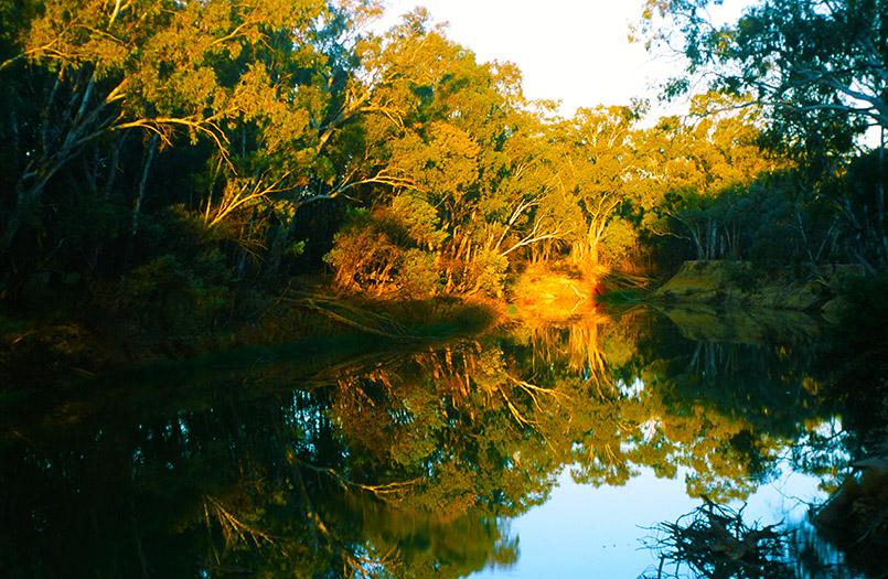 bei Echuca: Goulburn River