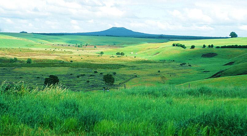 bei Hamilton: Mount Napier