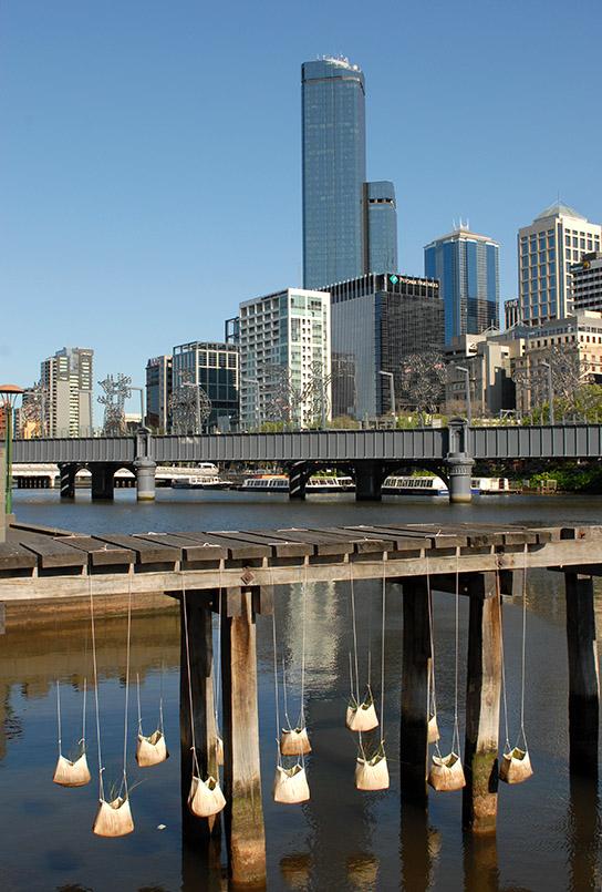 Minigarten an der Southbank-Promenade von Melbourne