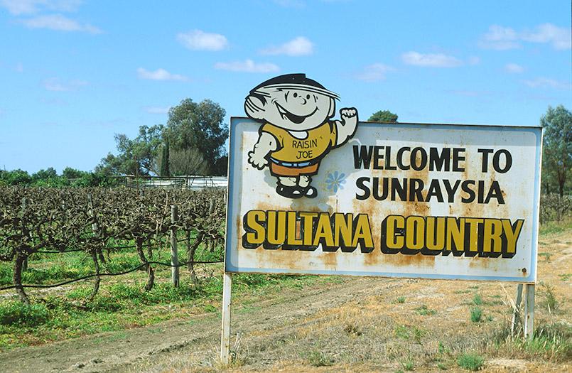 Dank der Bewässerung das Rosinenland am Murray: Sunrasyia