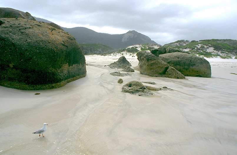 Wilsons Promontory National Park/bei Tidal River: Norman Beach
