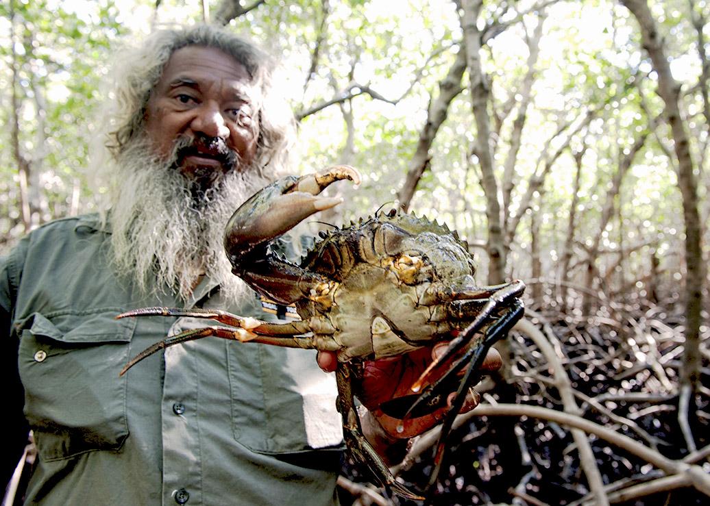 Brian Lee fängt in den Mangroven des Cape Leveque delikate Mud Crabs.