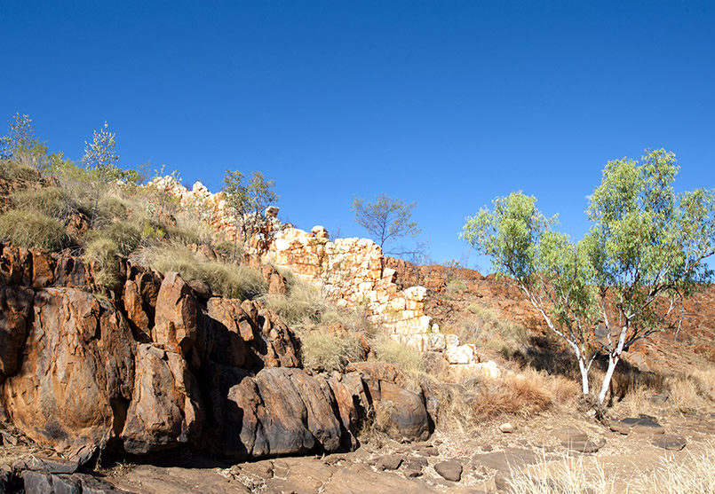 Die China Wall von Halls Creek