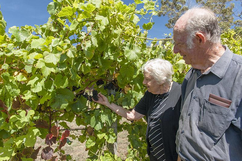 Porongurup: Mary und Mark Dilworth vom Abby Creek Vineyard