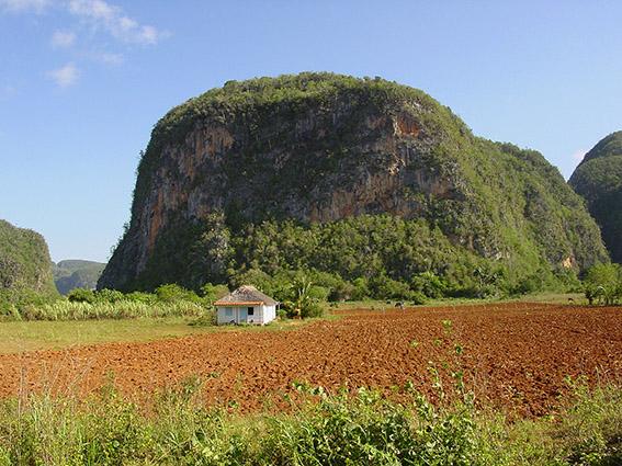 Kuba/Vale de Viñales: Farm mit Mogotes-Karstkegeln