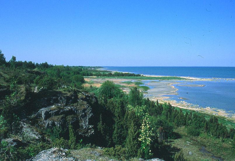 Die Üügi-Pank-Küste von Muhu