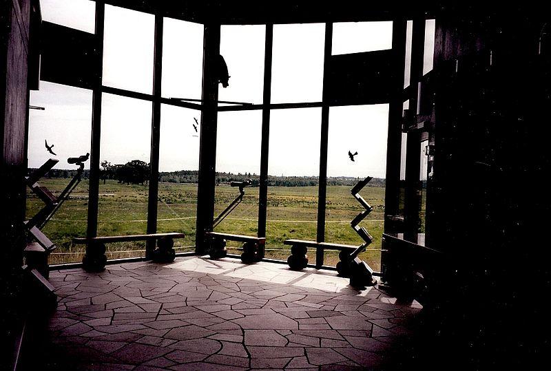 Vogelbeobachtungshaus am Hornborga-See